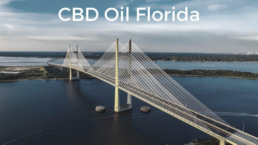 CBD oil Florida - Sunshine Skyline Bridge, Tampa
